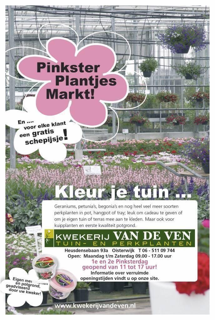 pinksteren 2016 plantjesmarkt