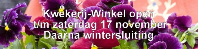 wintersluiting winke 4 1