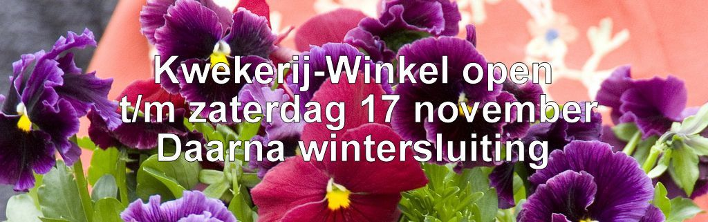 wintersluiting winkel website
